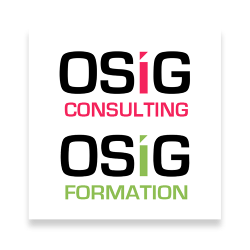 consulting+formation_trans